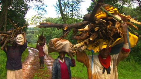 People carrying wood from the Mau Forest
