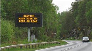 Traffic sign warning of deer