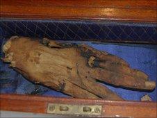Mummified hand