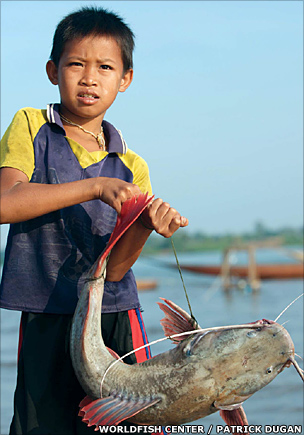 Boy with catfish