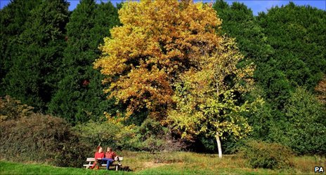 Visitors enjoying the autumn sunshine in Bedgebury National Pinetum and Forest, Kent, in October 2010.