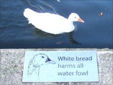 Feeding sign