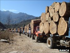 Logging trucks in Burma