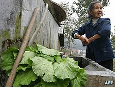 A farmer washes vegetables in a rural community in Huebi province (File photo)