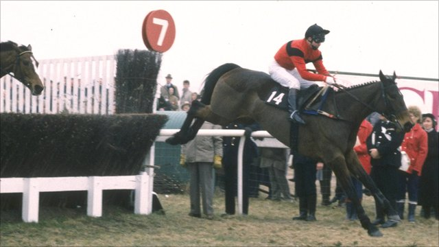 Jon Jo O'Neil on Dawn Run jumps a fence during the 1986 Cheltenham Gold Cup