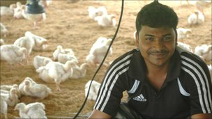 Man with his flock of chickens in a coup