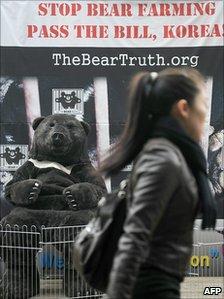 Anti-bear farming protest in Seoul. 6 Nov 2010