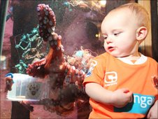 Ollie the octopus with a young fan