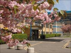 Rosie Maternity Unit, Addenbrooke's