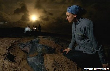 Researcher Sabrina Fossette with one of the leatherback turtles involved in her study (Image: Andy Myers)