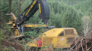 Logging operation in Washington state