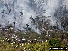 Manmade fires to land for cattle or crops in Brazil