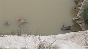 Four clay-like bodies lying face down in the water on the Yellow River