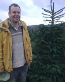 Bbc Buckinghamshire Christmas Tree Farm In Demand