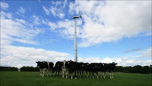 Turbine in filed with cows