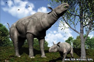 Artwork of a female Paraceratherium and her young, an extinct mammal weighing some 15 tonnes which lived in Asia 30-25 million years ago