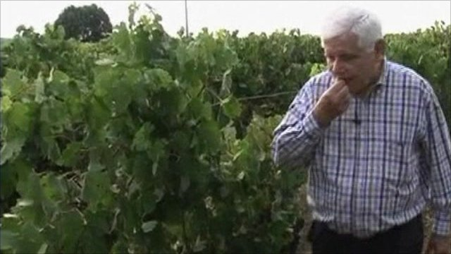 Jean Pierre Amoreau, wine maker and manga comic star