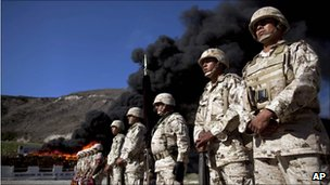 Soldiers stand in line next to tonnes of marijuana being incinerated in Tijuana, 10 November 2010