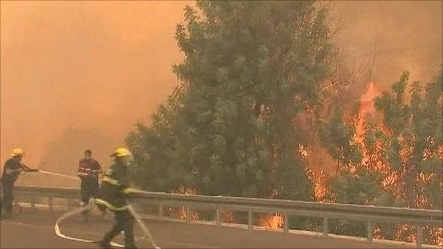 Israel forest fire