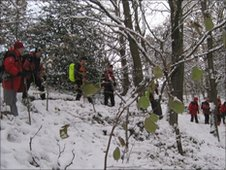 Rescuers search through woods