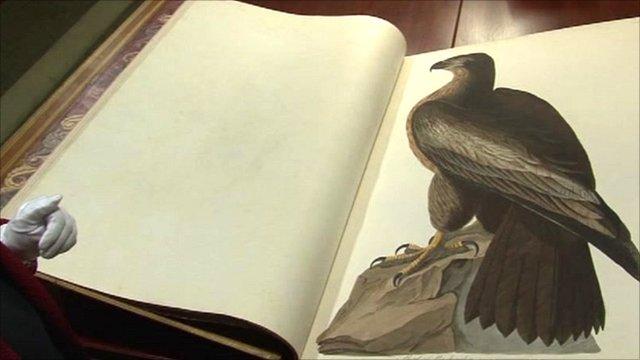 John James Audubon's Birds of America
