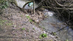 Afon Goch Llanberis (pic: Environment Agency)