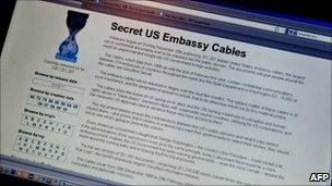 Wikileaks webpage, AFP/Getty