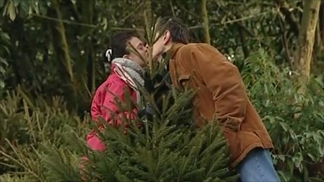 Couple kissing behind a Christmas tree