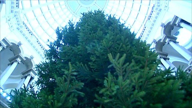 Tate Britain's Christmas tree