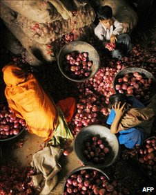 Sorting onions at a vegetable market in Delhi on February 2007