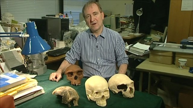 Professor Chris Stringer with the skulls of a human and three of our ancestors
