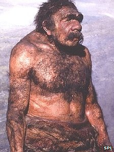 Neanderthals cooked and ate vegetables