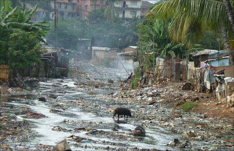 A pig scavenges in the street in a slum in  Freetown, the capital of Sierra Leone.