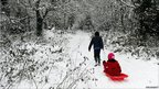 Annabel Lee, sic, is pulled on a sledge by her brother Archie, eight, through a snow covered woods in Birkenhead, north-west England.