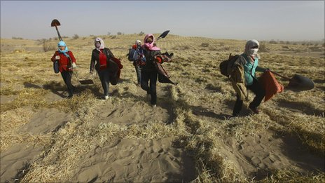 Residents plant grass in Gansu province on 9 December 2010
