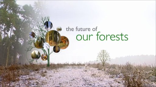 The Future of our Forests
