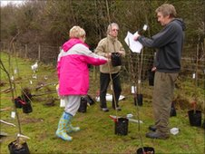 Volunteers planting orchard in Cosmeston