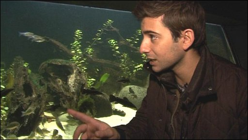 Ricky tries counting fish at London Zoo!