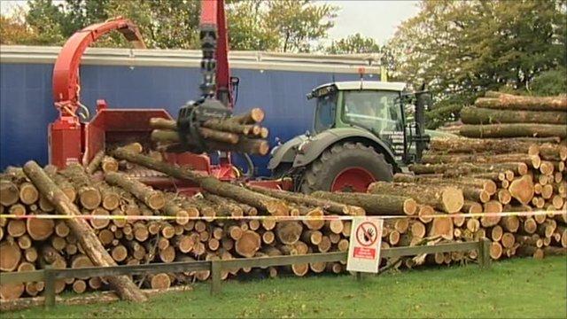 Logging in progress