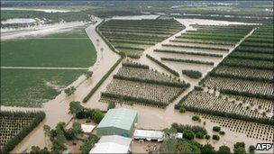 Flooded fields and orchards in the town of Emerald on the outskirts of Queensland
