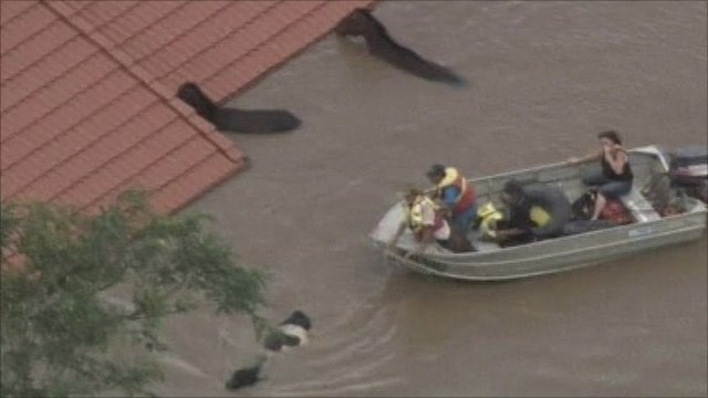 Rescuers trying to lead horses and cattle to safety