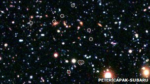 Galaxies making up the protocluster 