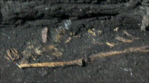 One of the skeletons which was discovered underneath Free Derry Presbyterian Church