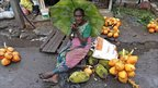 Woman selling jack fruits and coconuts in Colombo