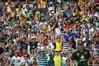 Australian fans celebrate