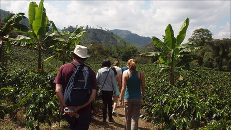 Tourists visit a coffee plantation in Colombia