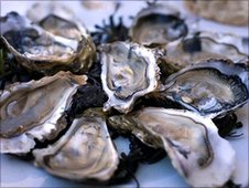 Locally caught oysters are a local favourite