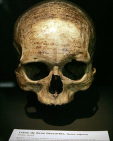 The skull of French philosopher and scientist Descartes