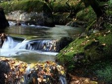 Rachael Burch photograph of Dartmoor