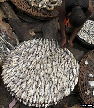 A fish stall in a Nigerian market (Image: Reuters)